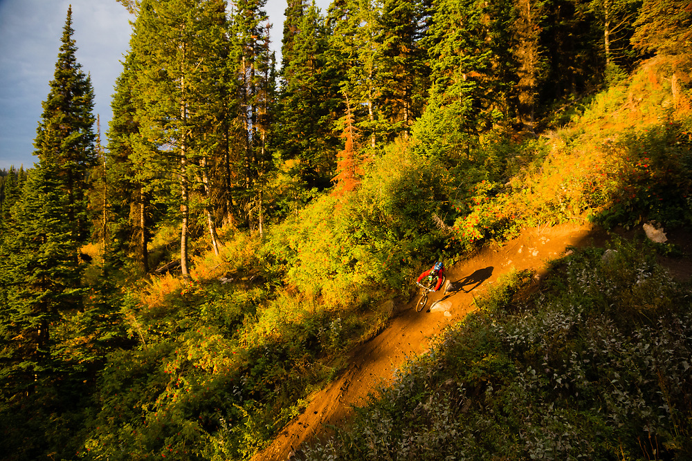 Andrew Whiteford descends the Fuzzy Bunny Trail on Teton Pass near Wilson, Wyoming.