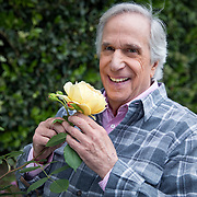 Portrait and photographs of actor and author Henry Winkler at his home in Brentwood, California where he often tends to his own roses in his garden. LICENSING INQUIRIES: PLEASE CONTACT ME DIRECTLY USING THE CONTACT MENU OPTION.