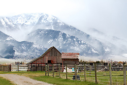 Stormy day, old barn, Mt. Baldy, Swan Valley, Idaho
