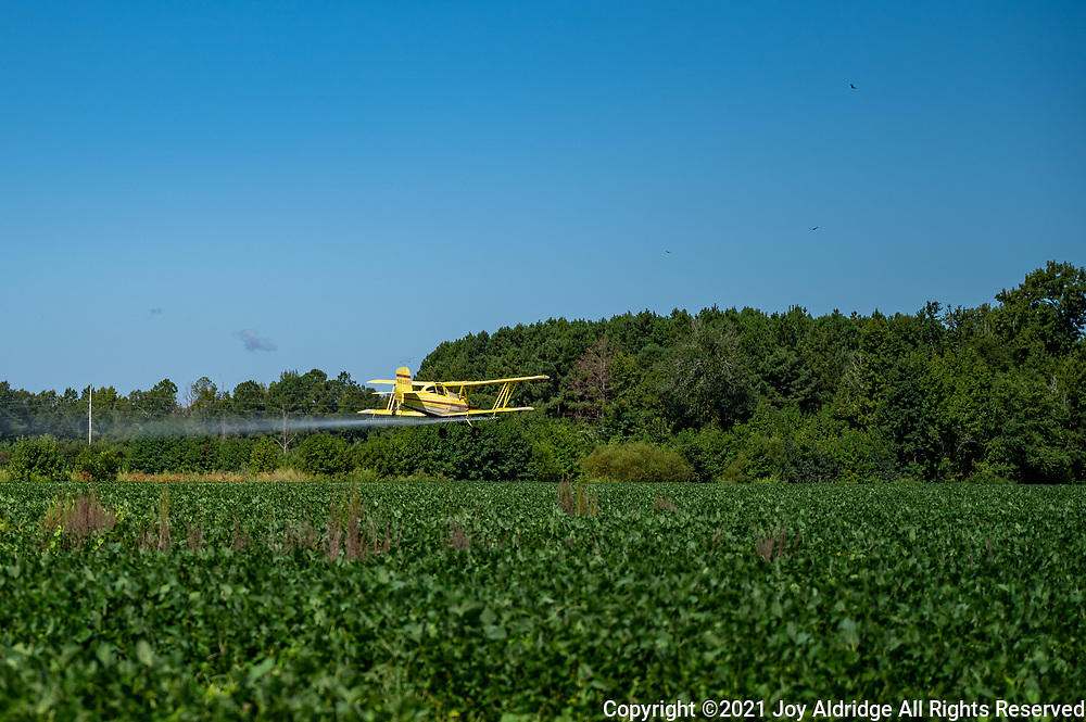Crop duster spraying fields in rural South Carolina in a bi-plane. Image taken by Joy Aldridge with a NIKON Z 6_2 and NIKKOR Z 24-70mm f/2.8 S at 68mm, ISO 100, f2.8, 1/5000.