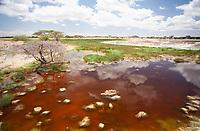 Reflections in northern Kenya