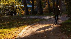 THEMENBILD - eine Frau spaziert auf einem Weg mit abgefallenen Blättern an einem sonnigen Herbsttag, aufgenommen am 21. Oktober 2015, Zell am See, Österreich // a woman walks along a path with fallen leaves on a sunny Autumn Day, Zell am See, Austria on 2015/10/21. EXPA Pictures © 2015, PhotoCredit: EXPA/ JFK