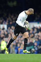 Liverpool's Simon Mignolet celebrates Liverpool's Philippe Coutinho's goal - Photo mandatory by-line: Dougie Allward/JMP - Tel: Mobile: 07966 386802 23/11/2013 - SPORT - Football - Liverpool - Merseyside derby - Goodison Park - Everton v Liverpool - Barclays Premier League