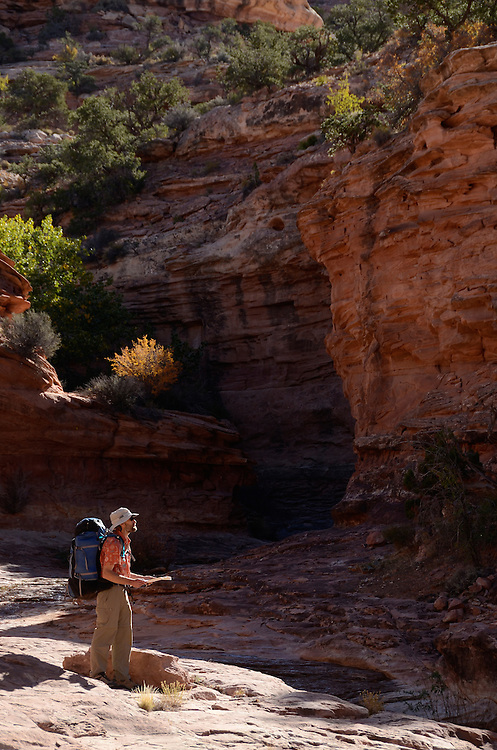 Hiker reading a map on a backpack trip in Southern Utah.