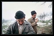 Gravediggers, Transylvania