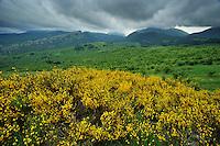 Pollino National Park, Italy; WWoE Mission