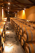 In the barrel ageing cellar: rows of barriques Chateau Kirwan, Cantenac Margaux Medoc Bordeaux Gironde Aquitaine France