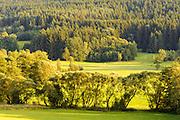 Landschaft südöstlich von Bad Kötzing, Bayerischer Wald, Bayern, Deutschland | landscape south east of Bad Koetzing, Bavarian Forest, Bavaria, Germany