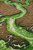 Marshes in Bahía de Cádiz Natural Park, Cádiz, Andalusia, Spain
