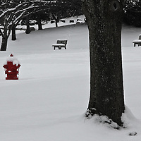 """""""Seeing Red"""" 2<br /> <br /> A bright sight on snowy day! A wonderful shiny red fire hydrant in a snow filled winter scene!<br /> The image is done in black and white with selective color on the red fire hydrant!!<br /> <br /> Winter in Michigan by Rachel Cohen Winter in Michigan!<br /> <br /> Beautiful winter scenes, winter wonderlands, and lone trees in winter!<br /> <br /> Images in color, B&W, and using selective color.<br /> <br /> If you love winter, snow, trees, rolling hills, and lone trees then you'll find a lovely selection!! <br /> <br /> Winter in Michigan by Rachel Cohen"""
