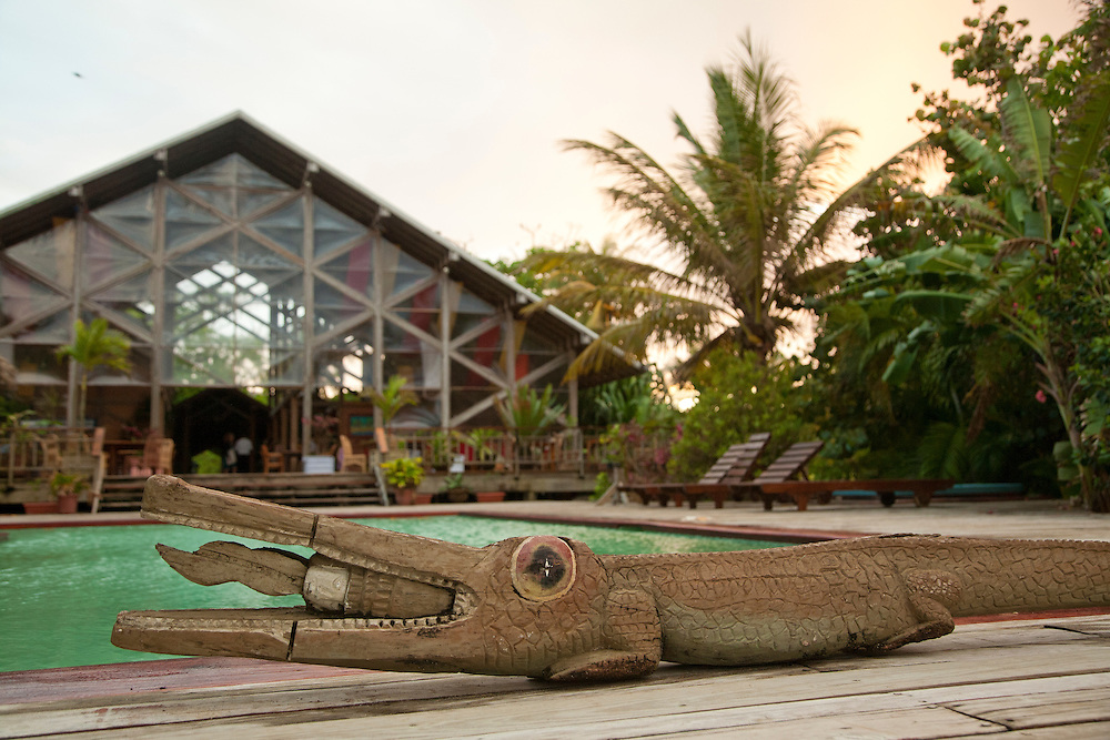 Central America, Honduras, Bay Islands, Roatan, wood alligator folk art by swimming pool at Palmetto Bay Plantation    PR