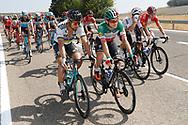 Peter Sagan (SVK - Bora - Hansgrohe), Elia Viviani (ITA - QuickStep - Floors) green jersey, during the UCI World Tour, Tour of Spain (Vuelta) 2018, Stage 8, Linares - Almaden 195,1 km in Spain, on September 1st, 2018 - Photo Luis Angel Gomez / BettiniPhoto / ProSportsImages / DPPI