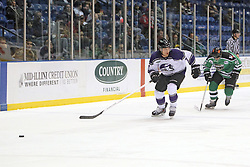 15 November 2013:  Paul Arnott & Chris Wilson. Louisiana IceGators at Bloomington Thunder Southern Professional Hockey League (SPHL) at the U.S. Cellular Coliseum in Bloomington Illinois