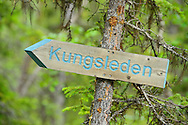 The King's Trail hiking trail, Kvikkjokk in the Laponia UNESCO World Heritage Site, Greater Laponia rewilding area, Lapland, Norrbotten, Sweden
