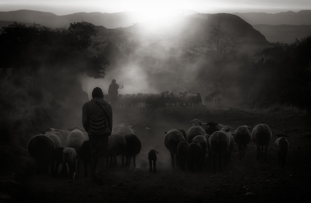 Shepherds and lambs at dusk in Atzitzintla, near the South face of Citlaltepetl Volcano, Mexico 3500 meters above sea level.