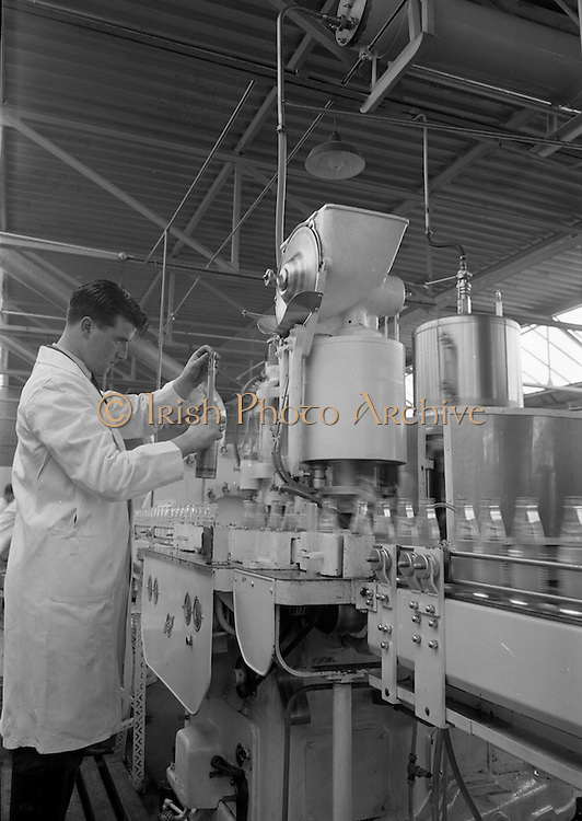 "21/5/1965<br /> 5/21/1965<br /> 21/5/1965<br /> <br /> A General View of the Washing, Automatic Filling and Capping of ""Fanta"": in John Egan & Son's Coca Cola Plant in Chapelizod Dublin"