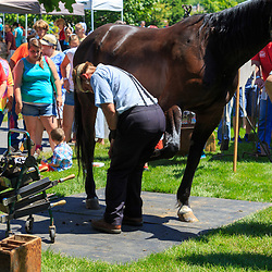 Intercourse, PA - June 18, 2016: An Amish man explains and demonstrates the method of putting shoes on a horse at in the Community Park at the Intercourse Heritage Days event.