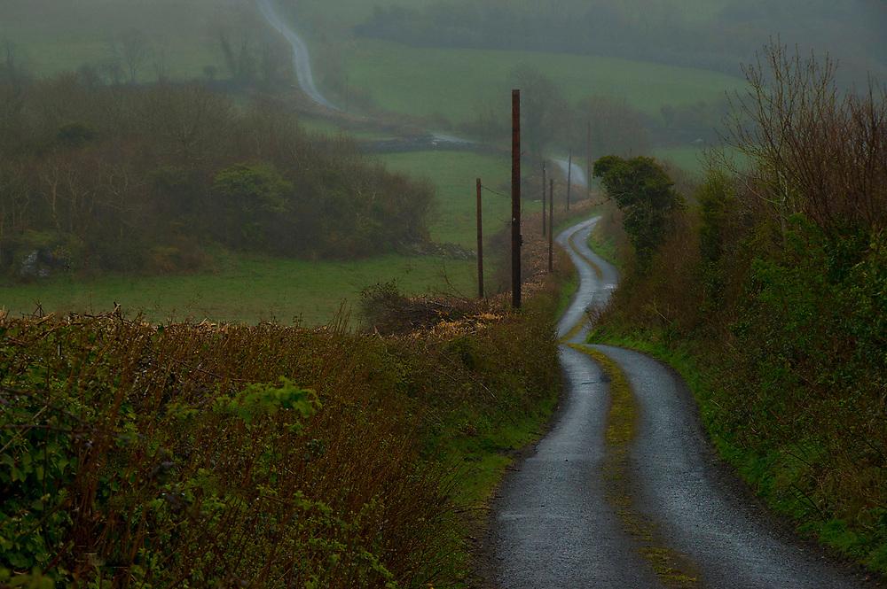 Foggy road in Western Ireland