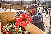 09 MARCH 2021 - DES MOINES, IOWA: A person places flowers representing Iowans killed by COVID-19 in a coffin during a memorial service for the 5,574 Iowans killed by COVID-19 in the one year since the pandemic started. About 75 people attended the service. The first three cases of the Coronavirus (SARS-CoV-2), all Iowans who had traveled to Egypt on a cruise, were reported to the Iowa Department of Public Health on March 8, 2020. The first fatality in Iowa was reported on March 25, 2020.    PHOTO BY JACK KURTZ