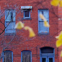 Leaves wave in the wind in front of a townhouse in Baltimore, MD November 21, 2016.