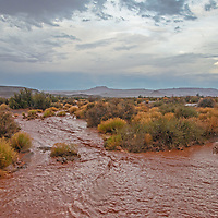 A flash flood pours across a road in Valley of the Gods, formerly part of Bears Ears National Monument.