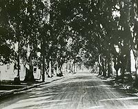 1910 Melrose Ave, near Western Ave.
