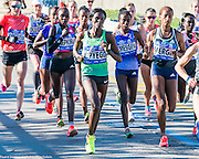In Bay Ridge, Brooklyn near the Verrazano–Narrows Bridge and near the start of the 2016 New York City Marathon. Pictured are the front-runners.