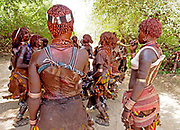 Whipping of young women in Ethiopian Tribal ceremony<br /> <br /> To the south of Addis Ababa, capital of Ethiopia, lies the tribal animist area. It stretches from Addis all the way to Lake Turkana, formerly known during colonial times as Lake Rudolph, which borders Kenya.<br /> <br /> The italian historian Carlo Conti Rossini has described this part of Ethiopia to be a Museum of People's as there are at least eight major tribal groups living here -  numbering around 200,000,<br /> who until recently were largely untouched by outside influences. But change is on the way, not least the impact of global phone technology  - and the development of the country's mineral resources by the Chinese.<br /> <br /> The annual flooding of the Omo River has been the life-support for the tribal people of this region.  For centuries the powerful flow and huge rise and fall of the river have provided up to three harvests a year for the indigenous people's staple crop - the highly nutritious SORGHUM<br /> <br /> But in 2006 President Meles Zenawi of Ethiopia commissioned the construction of the tallest hydro-electric dam in Africa.  The project was never put to tender, the tribal groups never consulted,<br /> and conservation groups today believe that the dam will destroy an already fragile environment as well as the livelihoods of the tribes, which are closely linked to the river and its annual flood.<br /> <br /> One of the most spectacular ceremonies in the Lower Omo Valley is the UKULI BULA ceremony of the Hamar tribal group; it's effectively a Rite-of-Passage from boy to manhood. And marriage.<br /> To reach manhood, Hamar boys must undergo two rituals: circumcision and a leap over the bulls. This determines whether the young Hamar male is ready to make the social jump from youth to adulthood. <br /> After a successful bull-jump - always naked - the Hamar boy, now a Maz - a mature member of the society - may get married.<br /> At every ceremony around two hundred members of the 