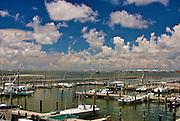 Bridgeside Marina, Grand Isle, LA
