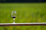 Wine glass. Chateau Paloumey, Haut Medoc, Bordeaux, France.