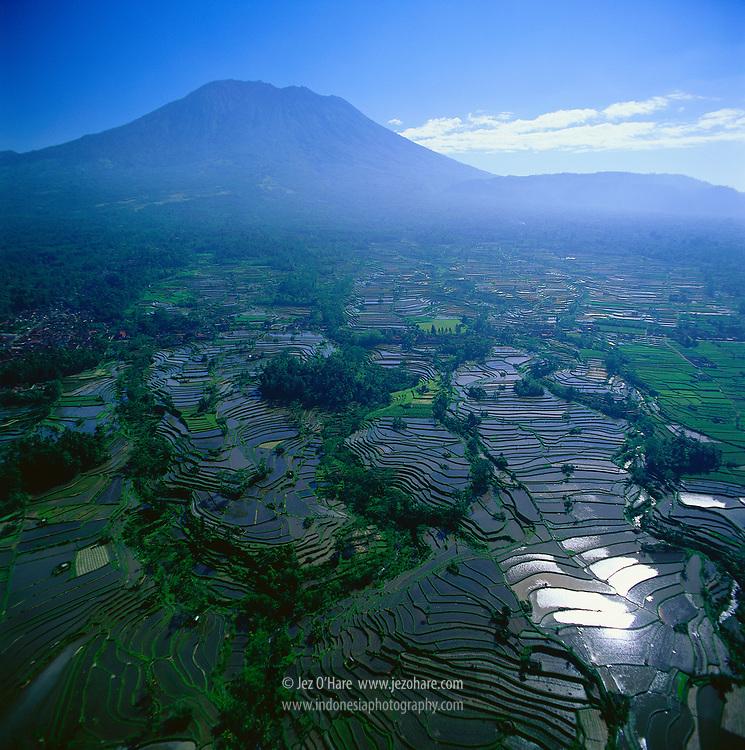Rice terraces & Mount Agung 3142m, Bali, Indonesia.