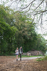 Young couple hiking with backpack in a forest, Bavaria, Germany