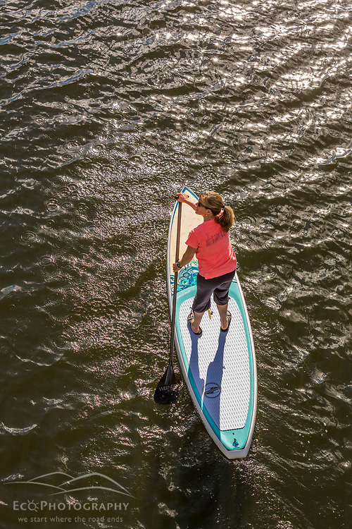 A woman paddleboarding on Chauncey Creek in Kittery, Maine.