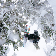 Tyler Hatcher backflips under one of the many trees of the Cascade Mountains.