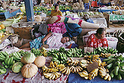 On a languid afternoon, women sell bananas, squash, and other produce in a market in Apia, Western Samoa. Material World Project.