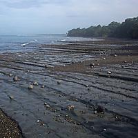 Central America, Costa Rica, Drake Bay. Drake Bay beach and tide.