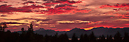 Olympic Mountain red-magenta alpenglow-lit clouds fill the sky after sunset viewed from the Kitsap Peninsula in Puget Sound, Washington, USA panorama