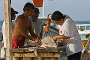 Local skiff fisherman cleaning the morning catch on their beach filet table.