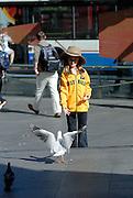 Child (6 years old) feeding a seagull. Sydney, Australia