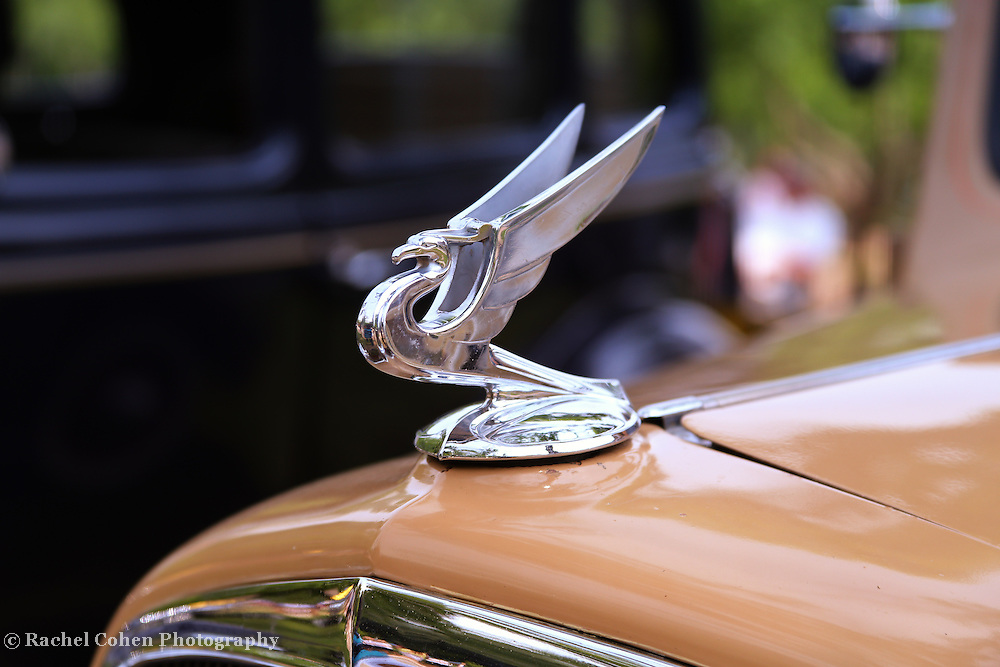"""""""1934 Flying Eagle""""<br /> <br /> Vintage 1934 Chevrolet hood ornament in glorious color!!<br /> <br /> Cars and their Details by Rachel Cohen"""