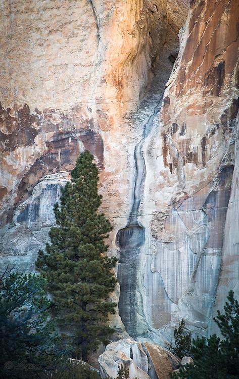 El Morrow New Mexico Rock Beauty