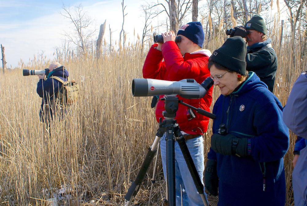 Delaware Bay, South Jersey, Eagle watchers