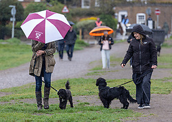 Licensed to London News Pictures. 13/05/2021. London, UK. Dog walkers brave the weather on Wimbledon Common in south west London this morning as miserable May continues with grey skies and prolonged rain with temperatures down to 12c today. Weather forecasters predict sunshine and showers for most of the weekend and next week with chilly nights in the South East as the wet weather continues. Photo credit: Alex Lentati/LNP