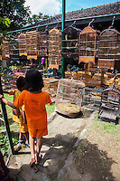 Pasar Ngasem Bird Market, or Yogyakarta Bird Market is a popular attraction for visitors to Yogyakarta as well as afficionados of birds and exotic bird cages.  It is an endearing quality of Asian men who fondly take care of their birds, take them out for walks, walk them down the street.