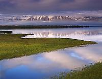 Wetlands along Eyafj??rdur near Dalv??k Iceland, Europe