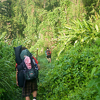 Backpacking through the jungles of Corcovado National Park, Costa Rica.  April 2009.  (Photo/William Byrne Drumm)