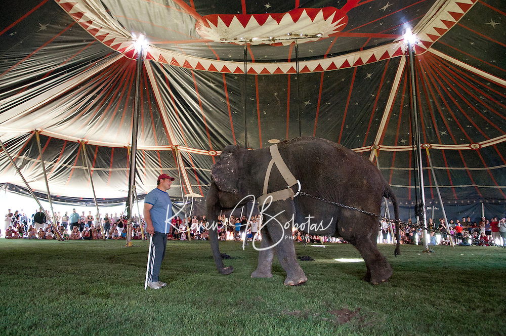 "Armando Loyal guides ""Lisa"" the elephant during the raising of the Big Top at Memorial Park Friday morning.  (Karen Bobotas/for the Laconia Daily Sun)"