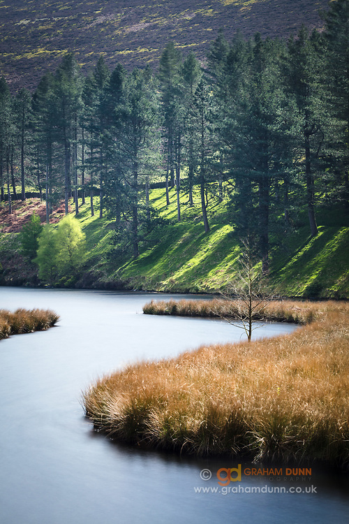 A long exposure smooths the waters and blurs the swaying grasses of this curving inlet as it makes its way into Howden Reservoir in the Upper Derwent Valley. A landscape scene from the Derbyshire Peak District, England, UK.