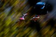 October 1, 2016: IMSA Petit Le Mans, #63 Nielsen, Balzan, Scuderia Corsa, Ferrari 488 GTE