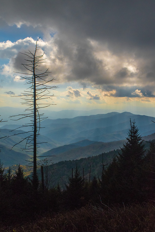 October 13, 2017: Light rain coats the mountainside before sunset at Clingmans Dome.
